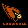 Arizona_Cardinals_01_MOCK__70293_thumb