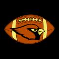 Arizona_Cardinals_06_MOCK__03582_thumb