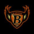 Baltimore_Ravens_03_MOCK__45921_thumb
