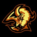 Buffalo_Sabres_02_tn__23236_thumb