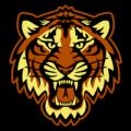 Detroit_Tigers_10_tn__51666_thumb