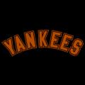 New_York_Yankees_16_tn__53180_thumb