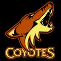 Phoenix_Coyotes_04_tn__86176_thumb