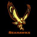 Seattle_Seahawks_10_MOCK__63308_thumb