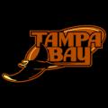 Tampa_Bay_Rays_07_tn__98536_thumb