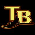 Tampa_Bay_Rays_10_tn__97047_thumb