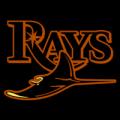 Tampa_Bay_Rays_12_tn__46058_thumb